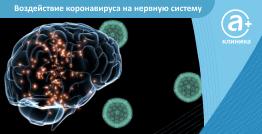 Воздействие коронавируса на нервную систему